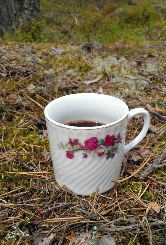 dagens kopp i skogen (545x800)