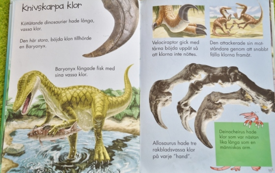 dinosaurier 3 (800x505)